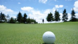 New Jersey Golf Netting Installation