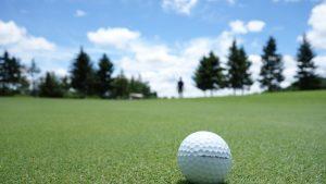 Ohio Golf Netting