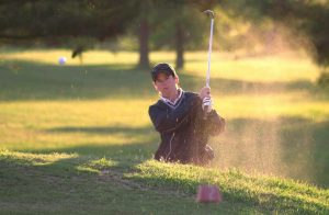 Custom Golf Netting Virginia