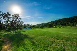 Custom Golf Netting